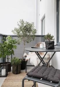Zeleně na balkóně není nikdy dost