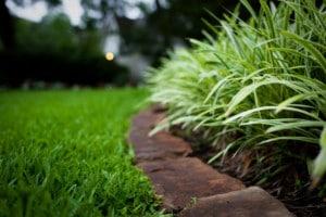 Správnou péčí o trávník dosáhnete úžasného výsledku - ilustrační obrázek, zdroj