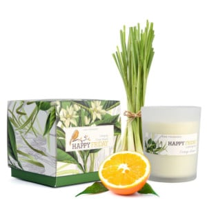 Vonná svíčka s vůní citronové trávy HF Living