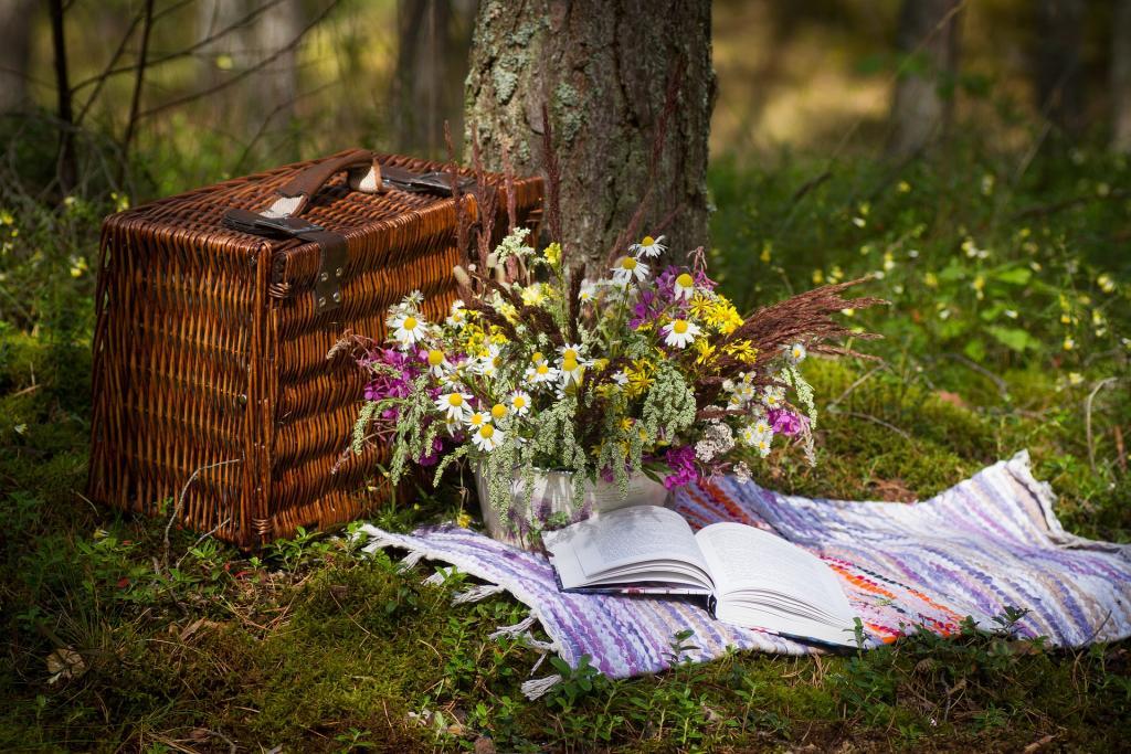 Jak si vybrat piknikový koš na letní stolování v přírodě  - livinis.cz 03b3b5705a